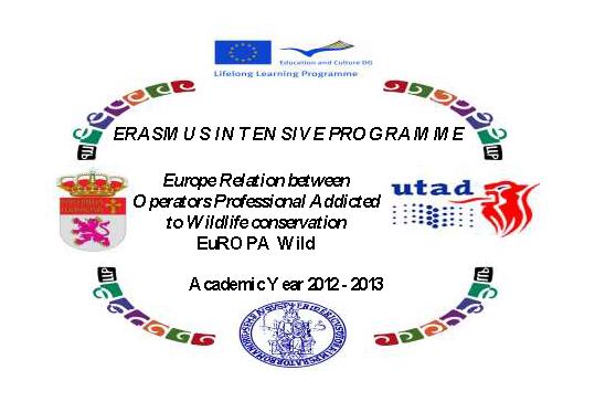 Foto: Curso intensivo de Erasmus