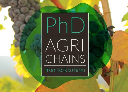 Foto: PhD AGRICHAINS