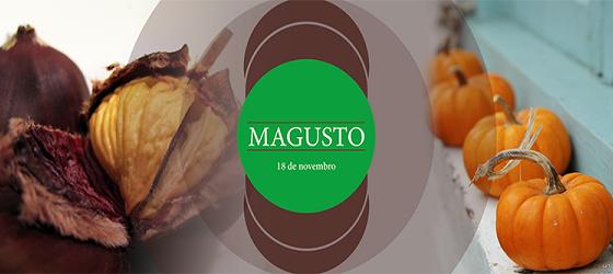 Banner: Magusto da UTAD 2014