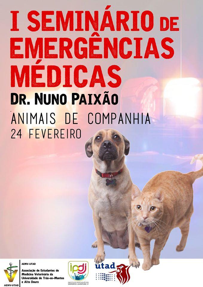 Cartaz: I Seminário de Emergências Médicas